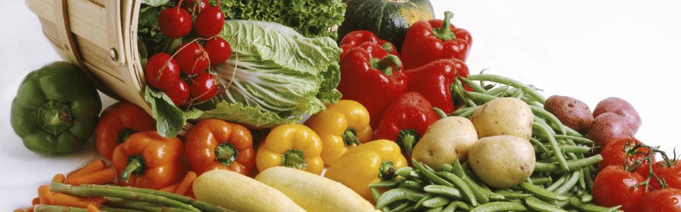 Sobre a Nutricionista Amarilda